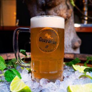 Guaycán IPA, Bardos, Antofagasta, artesanal, craft, beer, bares